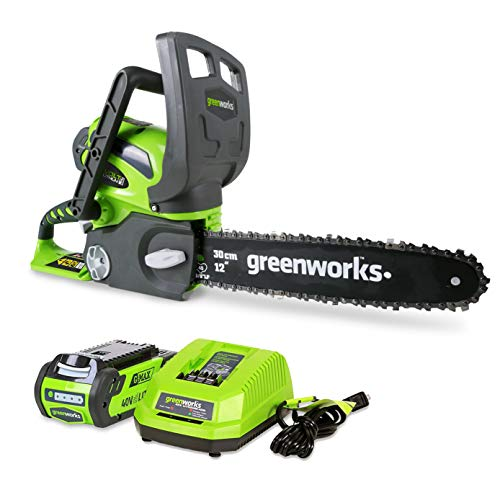 Greenworks 12-Inch 40V Cordless Chainsaw, 2.0 AH...