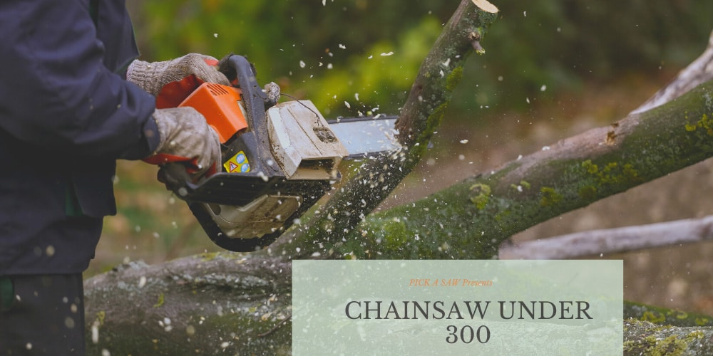Best Chainsaw Under 300